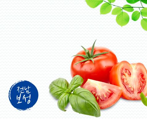 대한민국 최남단 산, 바다, 호수가 잘 어우러진 고장 전라남도 보성의 친환경 토마토를 소개합니다!  무농약 천적 재배와 엄격한 품질관리 통해재배된 최상급 토마토를 만나보세요!