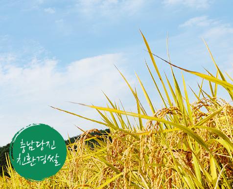우수산지 STORY.친환경쌀겨농법을 통해 건강하고 안전한 충남 당진 친환경 쌀을 소개합니다! 차별화된 송악농협의 방법으로 수확기 햅쌀의 밥맛 연중 느낄 수 있는 1등급 쌀을 지금 만나보세요!