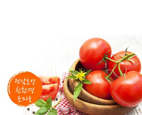 대한민국 최남단 산, 바다, 호수가 잘 어우러진 고장 전라남도 보성의 친환경 토마토를 소개합니다! 무농약 천적 재배와 엄격한 품질관리 통해 재배된 최상급 토마토를 만나보세요!