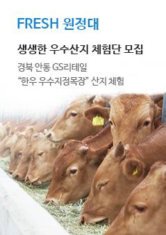 FRESH 원정대 생생한 우수산지 체험단 모집. 경북 안동 GS리테일 한우 우수지정목장 산지 체험