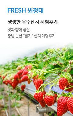FRESH 원정대. 생생한 우수산지 체험 후기. 충남 논산 딸기 산지 체험 후기