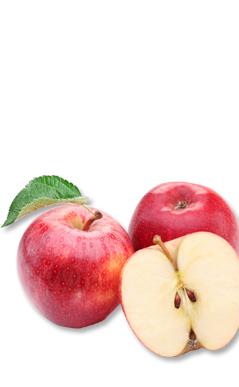 맛·선도 관리 TIP. 신선한 사과를 구별하는 방법 안내해 드립니다.
