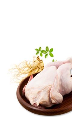 초복의 시그니쳐 닭고기